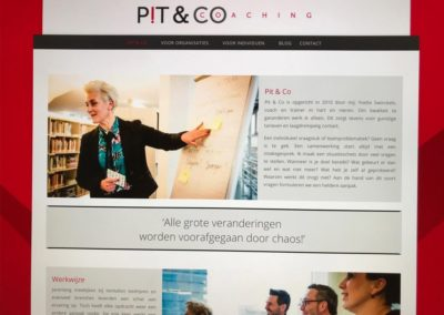 Website en Logo update Pit & Co